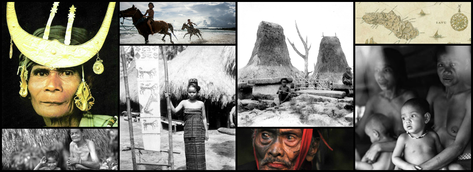 Native of Sumba