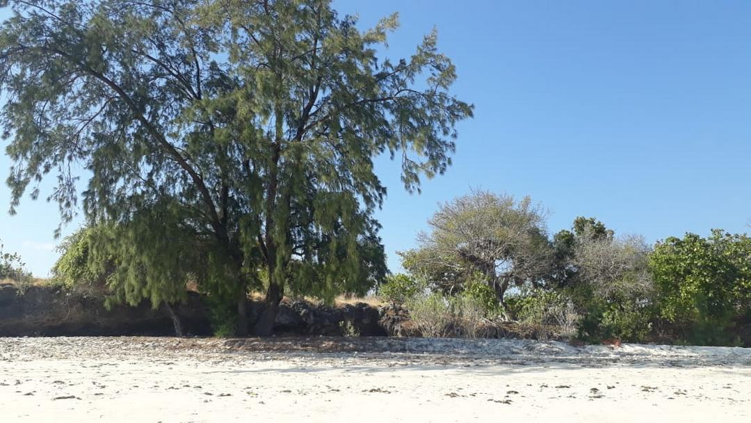 Front Beach ( Land for Sale )